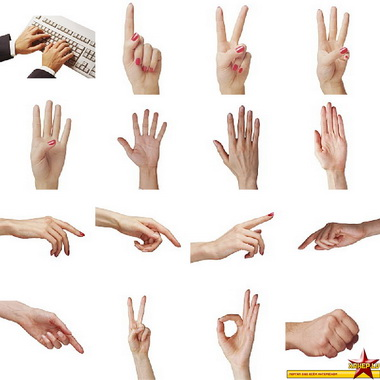 Дорсо-ульнарная стабилизация кисти при радиальном отведении большого пальца