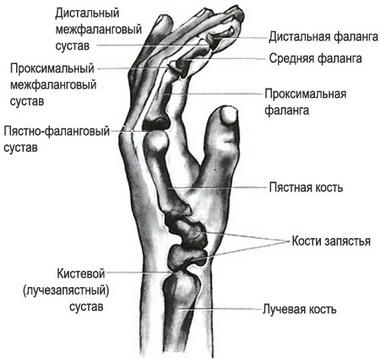 Ограничение движений в суставах руки